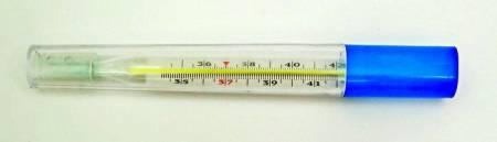 Термометр ртутный медицинский ударопрочный с защитным полимерным покрытием в футляре в Ростове-на-Дону — купить недорого по низкой цене в интернет аптеке AltaiMag
